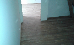 Rénovation  de Parquet Orleans